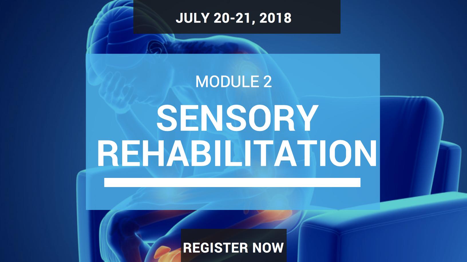 sensory rehab seminar module 2